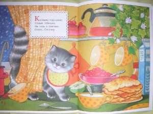 Котик-коток. ШСГ 0-1 -4